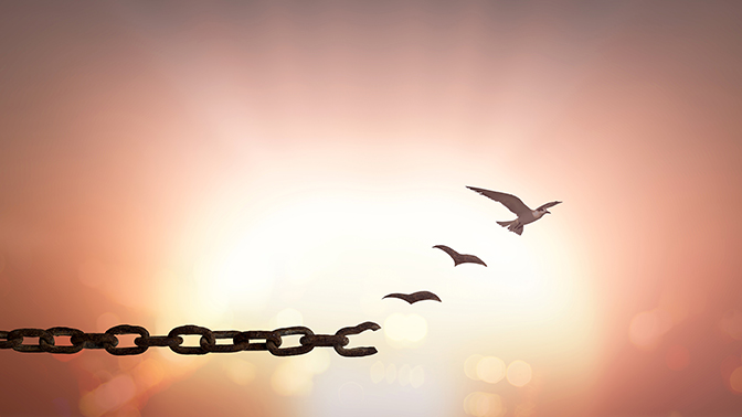 A chain link transforming into birds flying free.